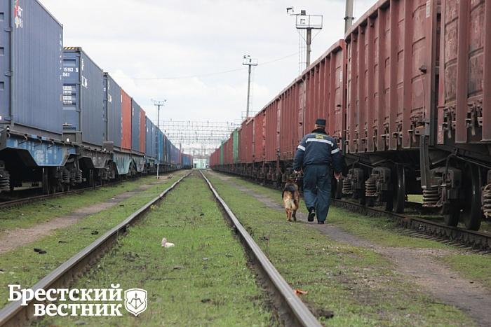 Как в Бресте охраняют и защищают железнодорожные грузы